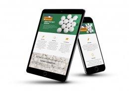 eps üretüm firması website tasarımı