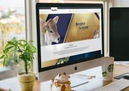 veteriner websitesi