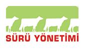 hayvancılık website tasarımı