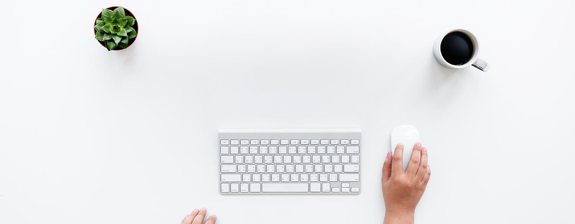 web tasarımı izmir website tasarım firması